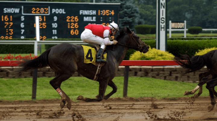 Apuestas en Las carreras de caballos